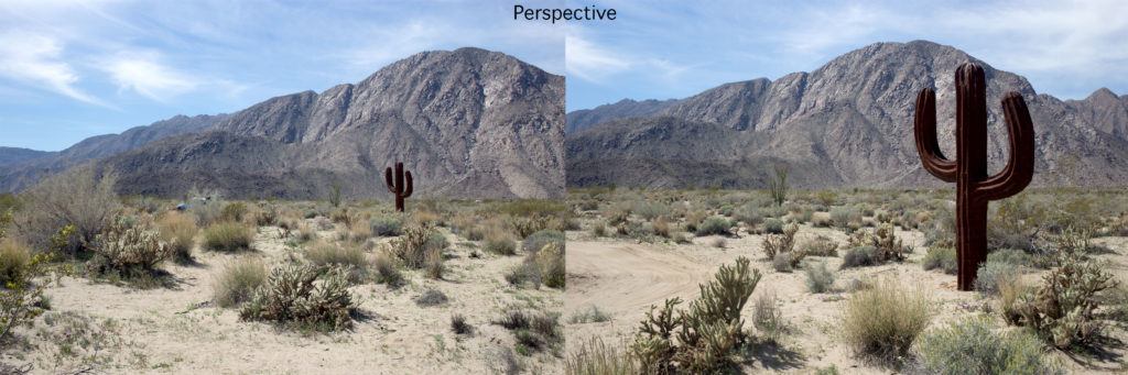 Perspective in Photography (c) Peter Tellone